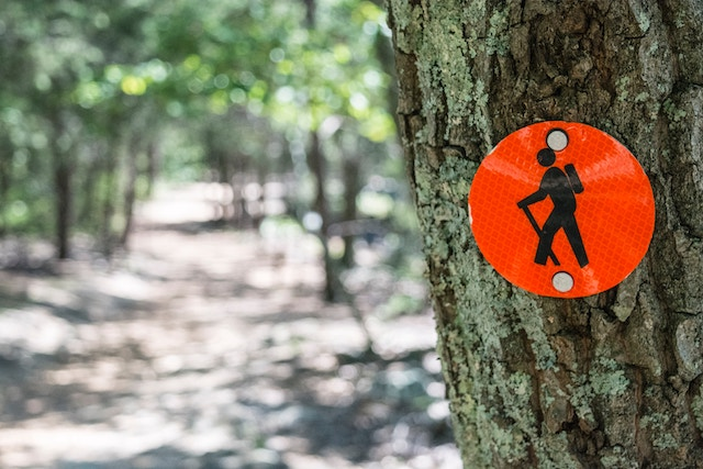 hike-sign-nature-beauty-trees-environment