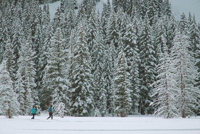 Frisco, CO snowshoe
